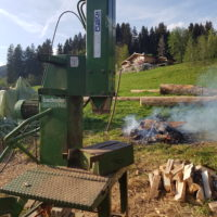 Holzspalter Posch - 5