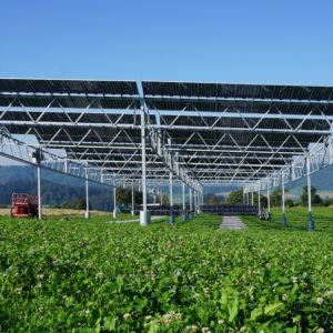 Agro Solar - 0