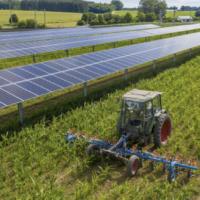 AGRO SOLAR Agrophotovoltaik - 2